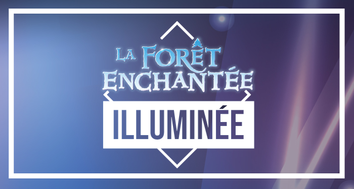 Illuminated Enchanted Forest